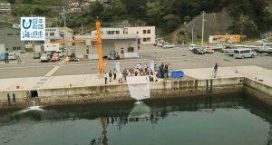 「全国豊かな海づくり大会」に向けて 小学生が稚魚を放流