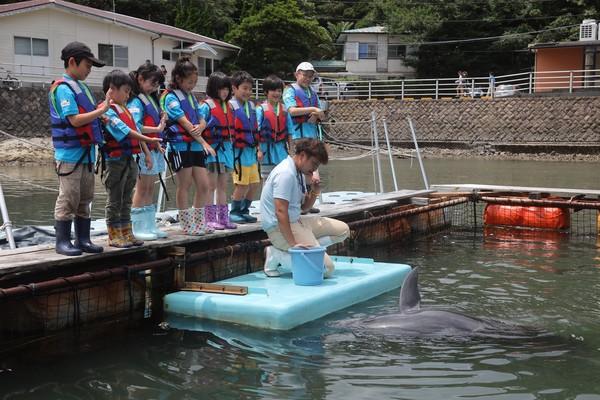 水族館のお仕事をしよう!@静岡県 〜海と日本PROJECT〜