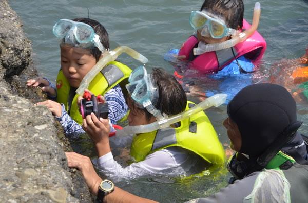水中カメラマンのお仕事をしよう!@千葉県  〜海と日本PROJECT〜