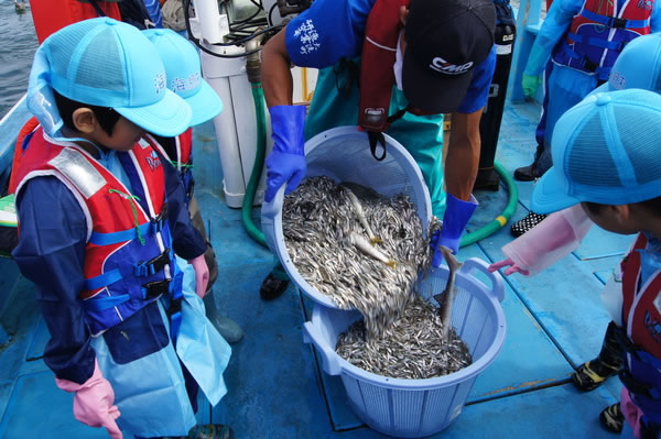 漁師(船上)のお仕事をしよう!@茨城県 ~海と日本PROJECT~